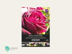 Black Caviar Rose advertisement