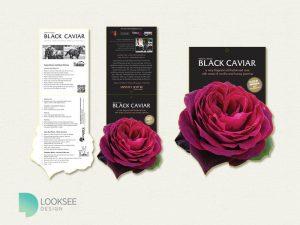 Black Caviar Rose label
