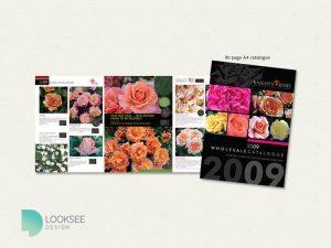 Knight's Roses 2009 catalogue