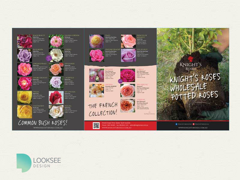 Knight's Roses Brochure