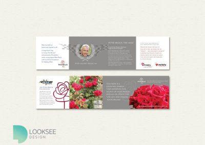 Peter Brock Foundation Rose