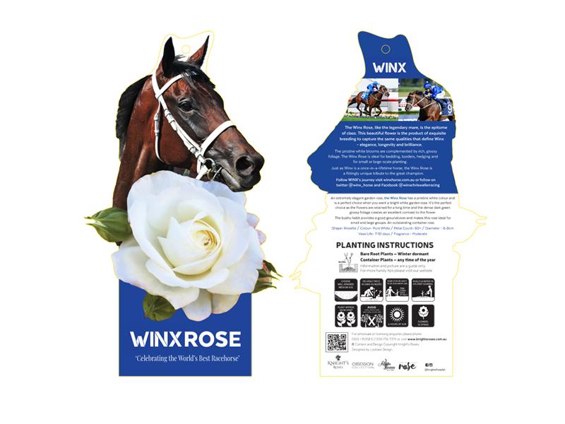 WINX Rose